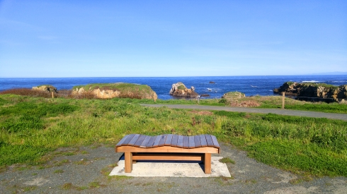 wave watching bench-01 24x BY CHARLEBOIS