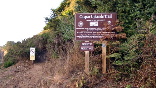 Caspar Upland Trail - Across from Caspar Beach