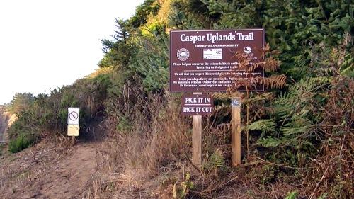 Caspar Upland Trail - Across from Caspar Beach