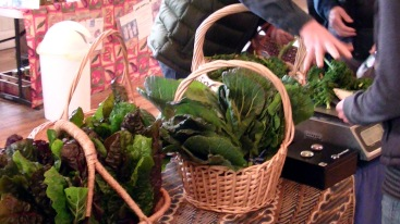 Winter Market Greens