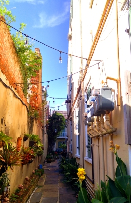 New Orleans alley. Photographer - Mary Charlebois, MaryGo09.1.16