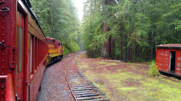 redwood-route-01-med-by-charlebois
