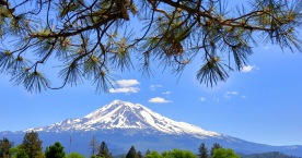 mt shasta-01 24x BY CHARLEBOIS