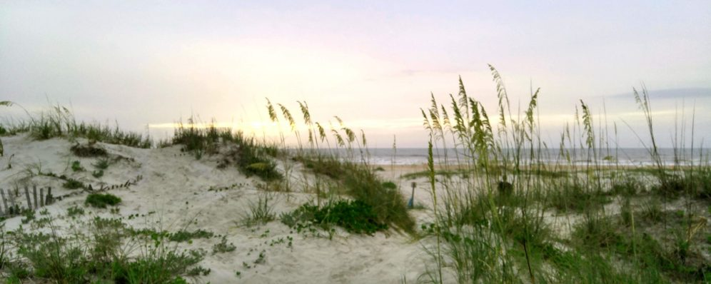 cropped-sa-beach-am-01-24x-by-charlebois.jpg