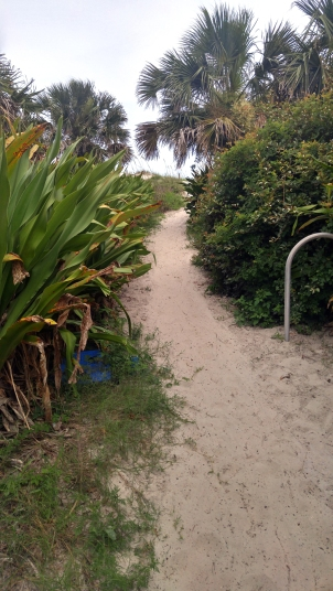 st francis beach house trail-01 24x BY CHARLEBOIS