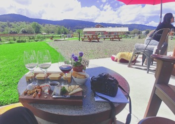Wine and cheese pairing at Pennyroyal Farm, Anderson Valley California.