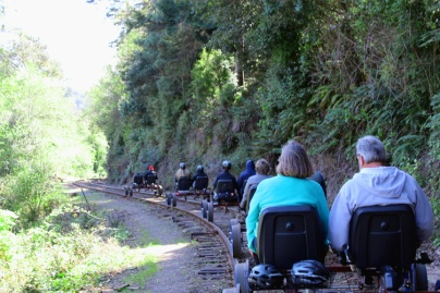 Skunk Train Rail Bikes going into the redwoods.