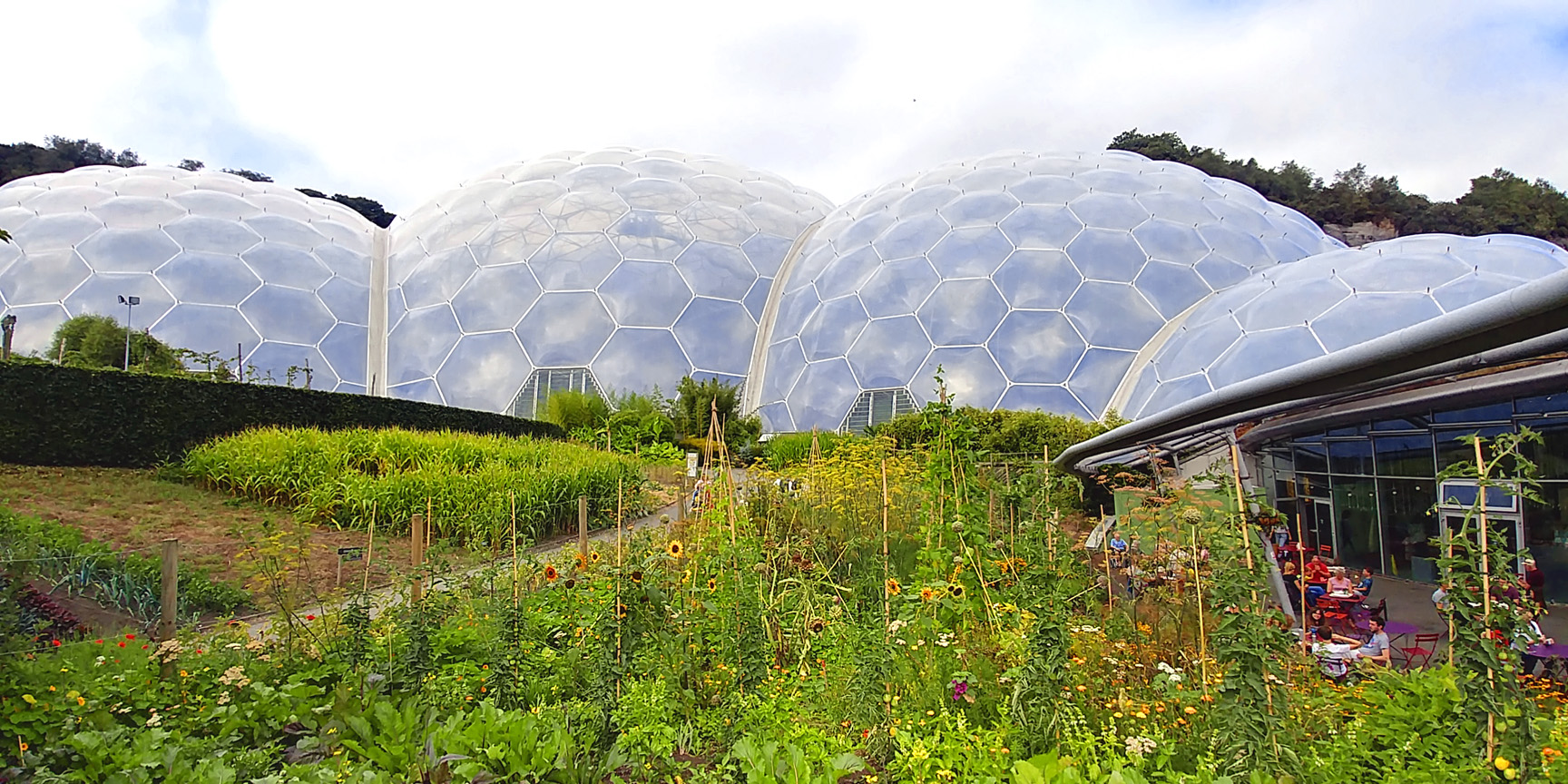 A rain forest under a dome. Eden Project, Cornwall England. Photograph by Mary Charlebois